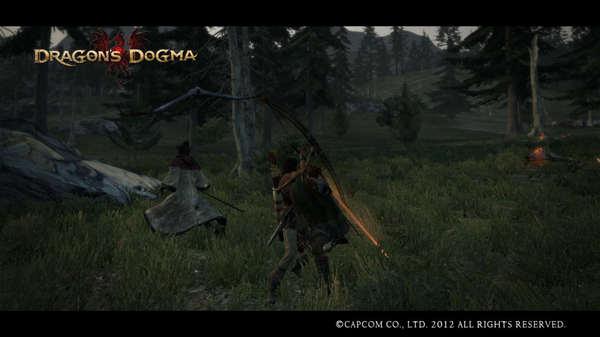 Dragon's Dogma Screen Shot _14.jpg