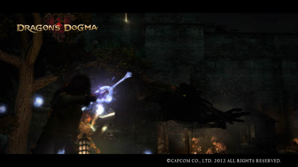 Dragon's Dogma Screen Shot _4.jpg